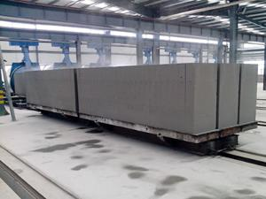 Rail Cart (for Autoclave Loading)